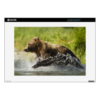 "Brown bear, female, fishing for salmon decals for 15"" laptops"