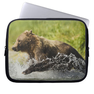 Brown bear, female, fishing for salmon computer sleeves