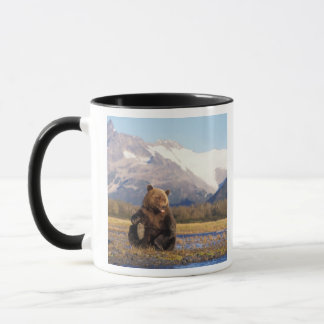 Brown bear, grizzly bear,  in riverbed with mug