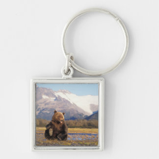 Brown bear, grizzly bear,  in riverbed with Silver-Colored square keychain