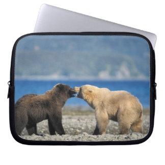 Brown bear, grizzly bear, play on the beach, computer sleeve