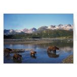 Brown bear, grizzly bear, sow and cubs in greeting card
