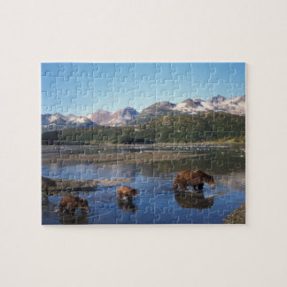 Brown bear, grizzly bear, sow and cubs in jigsaw puzzle
