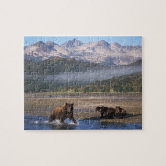 Brown bear, grizzly bear, sow fishing with cubs, puzzles