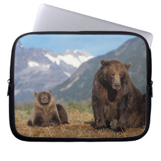 Brown bear, grizzly bear, sow with cub on laptop sleeve