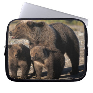 Brown bear, grizzly bear, sow with cubs looking laptop computer sleeve