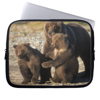 Brown bear, grizzly bear, sow with cubs on coast computer sleeve