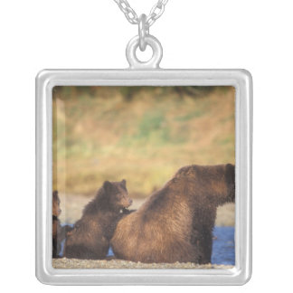 Brown bear, grizzly bear, sow with cubs, square pendant necklace