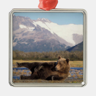 Brown bear, grizzly bear stretching on its back metal ornament