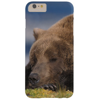 Brown bear, grizzly bear, taking a nap, Katmai Barely There iPhone 6 Plus Case