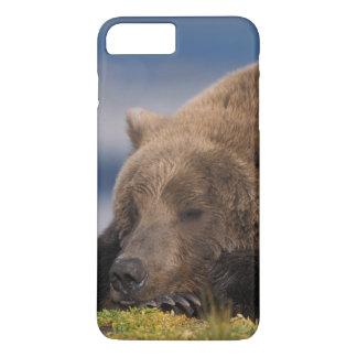 Brown bear, grizzly bear, taking a nap, Katmai iPhone 7 Plus Case