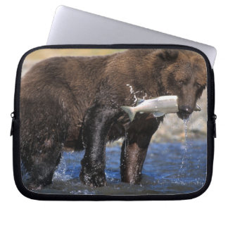 Brown bear, grizzly bear, with salmon catch, computer sleeve