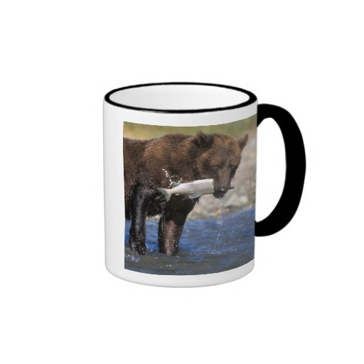 Brown bear, grizzly bear, with salmon catch, ringer mug