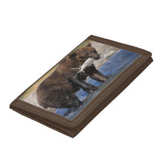Brown bear, grizzly bear, with salmon catch, trifold wallets