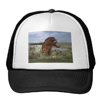 Brown Bear in a Field Hats