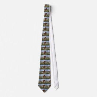 Brown Bear in a Field Neck Tie