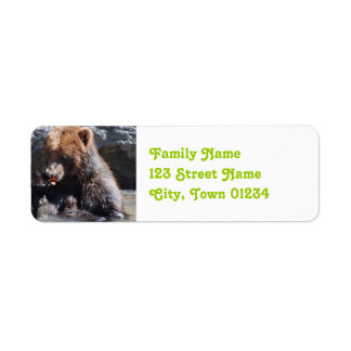 Brown Bear in Finland Label