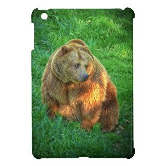 Brown bear in warm sunlight case for the iPad mini