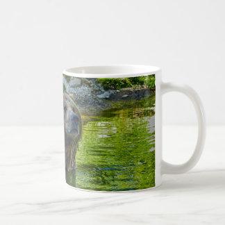 Brown bear in water coffee mug