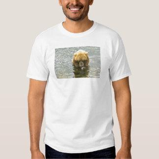 Brown bear in water tshirts