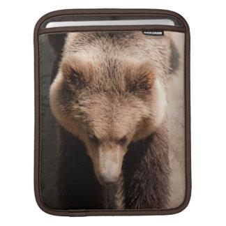 Brown bear iPad sleeve