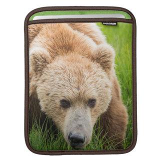 Brown Bear Sleeves For iPads