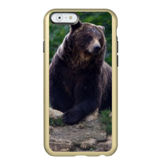 Brown bear incipio feather® shine iPhone 6 case