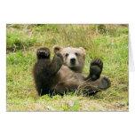 Brown_Bear_Kodiak_Cub Stationery Note Card