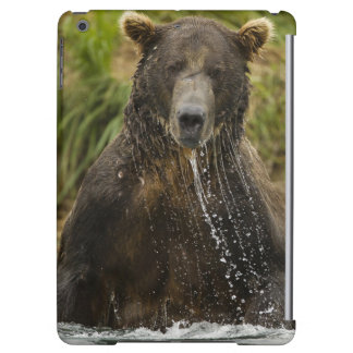 Brown bear, male, fishing for salmon case for iPad air