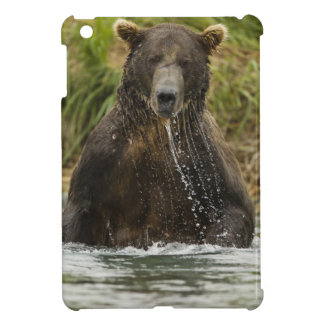 Brown bear, male, fishing for salmon case for the iPad mini