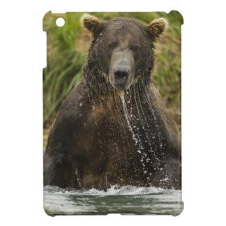 Brown bear, male, fishing for salmon iPad mini case
