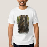 Brown bear, male, fishing for salmon T-Shirt