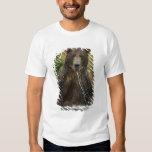 Brown bear, male, fishing for salmon T-Shirt
