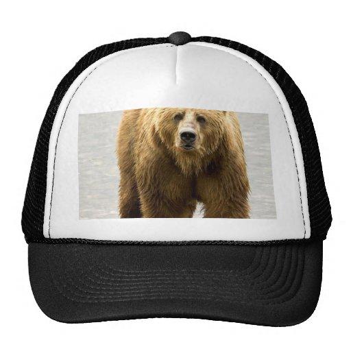 Brown Bear Mesh Hat