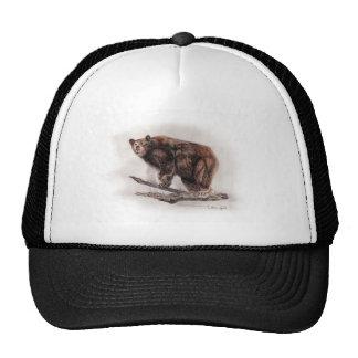 Brown Bear Mesh Hats