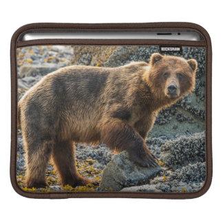 Brown bear on beach 2 sleeve for iPads