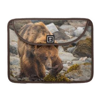 Brown bear on beach 3 sleeves for MacBooks