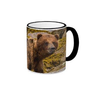 Brown bear on beach ringer mug