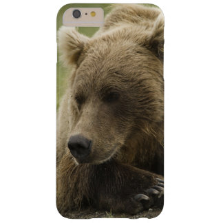 Brown bear, or Coastal Grizzly Bear, Ursus Barely There iPhone 6 Plus Case