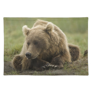 Brown bear, or Coastal Grizzly Bear, Ursus Cloth Placemat
