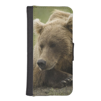 Brown bear, or Coastal Grizzly Bear, Ursus iPhone SE/5/5s Wallet Case