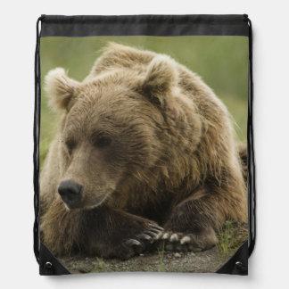 Brown bear, or Coastal Grizzly Bear, Ursus Drawstring Bag