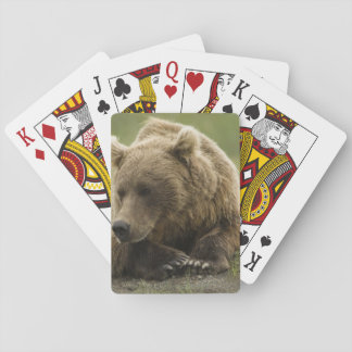 Brown bear, or Coastal Grizzly Bear, Ursus Playing Cards