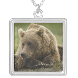Brown bear, or Coastal Grizzly Bear, Ursus Square Pendant Necklace