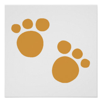 Brown Bear Paws Poster