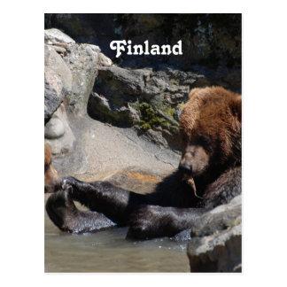 Brown Bear Post Card