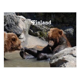 Brown Bear Post Cards