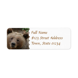 Brown Bear Return Address Label