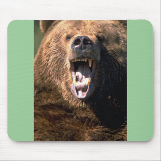 Brown Bear Showing Teeth Mouse Pad