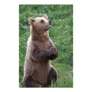 Brown Bear Stationery